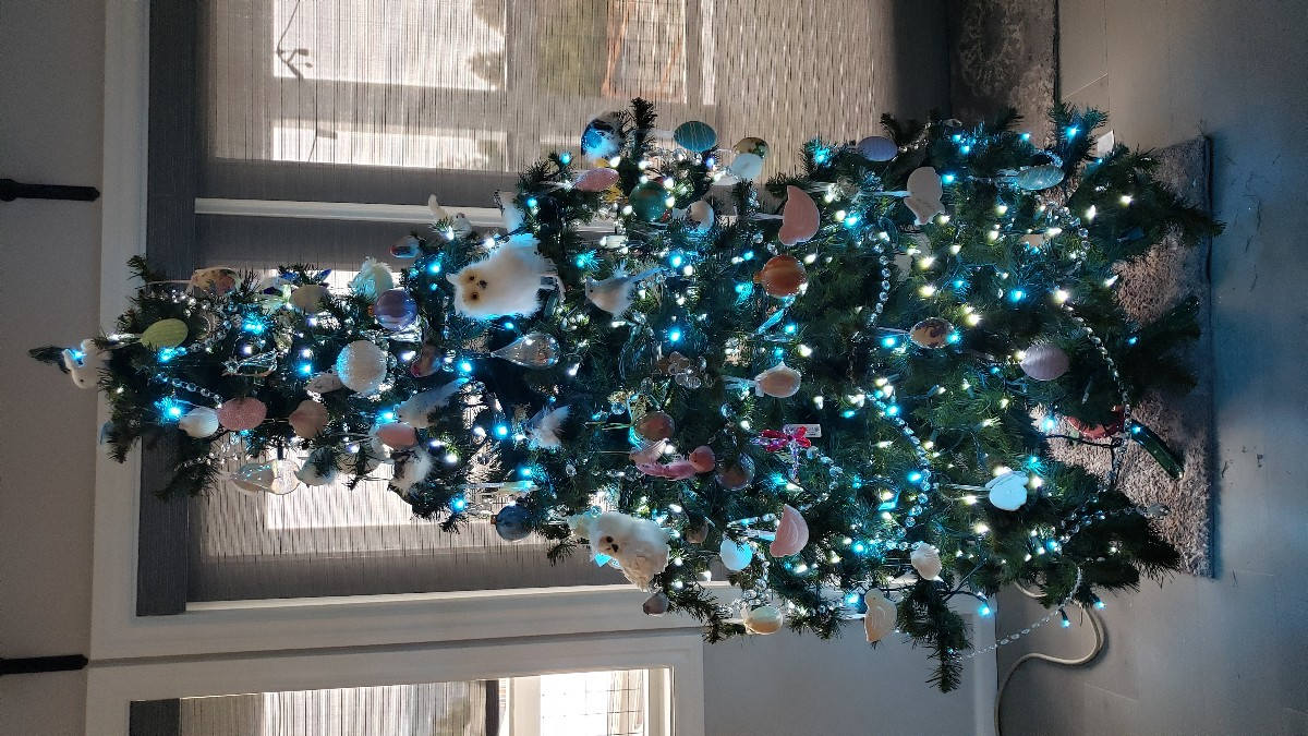 Click image for larger version.  Name:tree2.jpg Views:18 Size:305.9 KB ID:25930