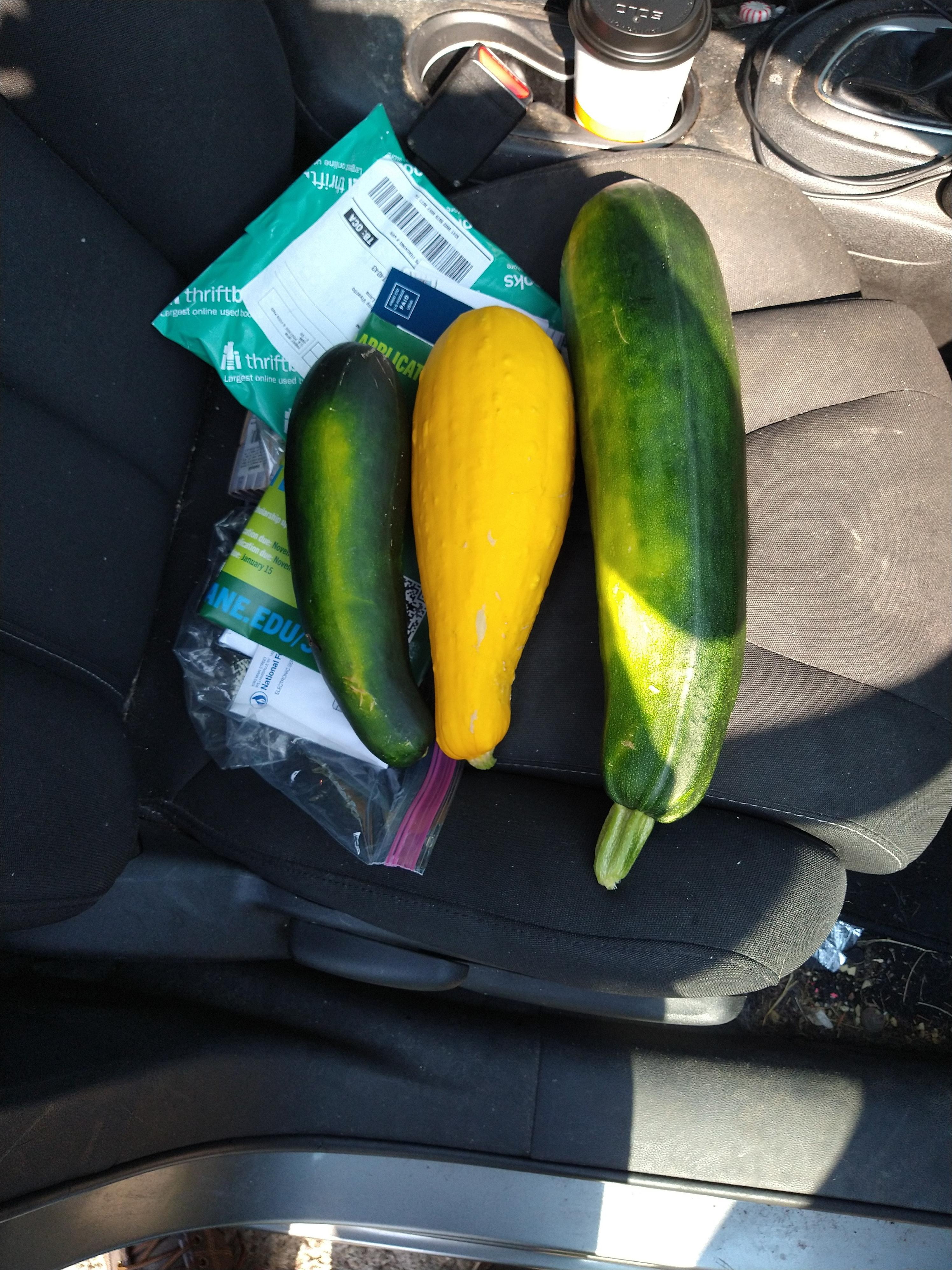 Click image for larger version.  Name:squash.jpg Views:40 Size:1.42 MB ID:26350